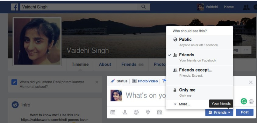 How To Use Facebook Privacy Button On Timeline?