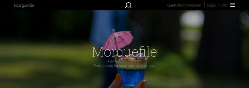 royalty free-images_moguefile